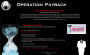anonymous:operation_payback_wikileaks.png